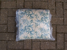 GBSC10 Scatter Cushion. 30 cm x 30 cm