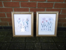 PGFP01 Pair Of Gold Framed Pictures